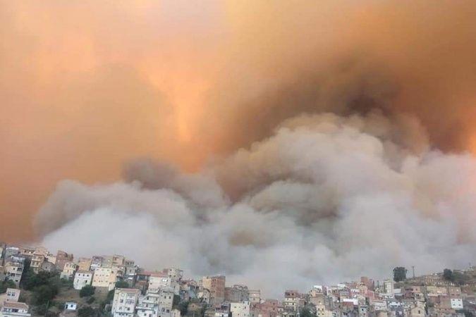 Cezayir'deki orman yangınlarında ölenlerin sayısı 42'ye yükseldi