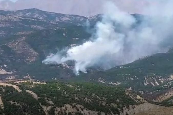 Tunceli Valiliği'nden orman yangını açıklaması