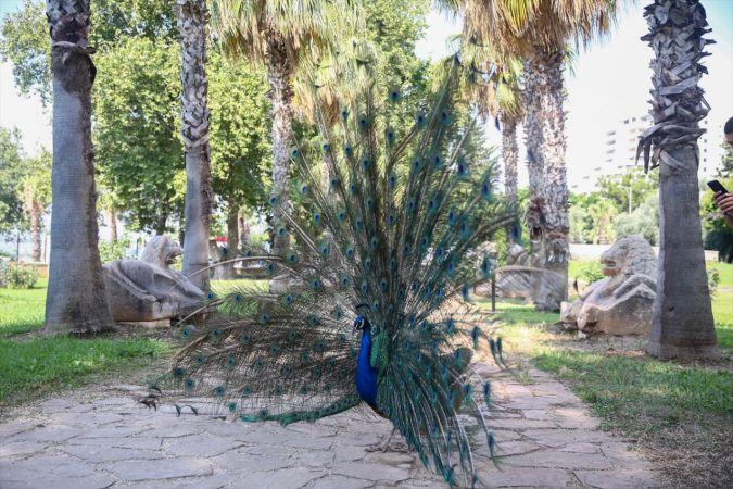 Şehit ve gazi çocukları Antalya'yı ziyaret etti