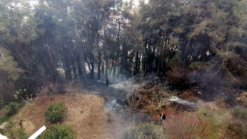 Manavgat kent merkezinde endişelendiren orman yangını