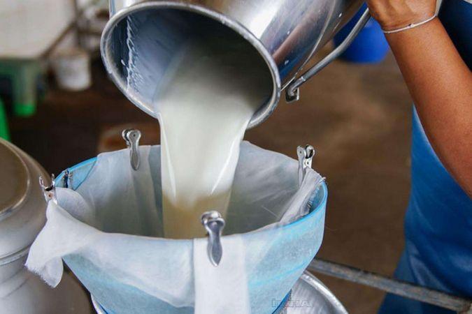 Süt üretimi bir önceki yıla göre azaldı