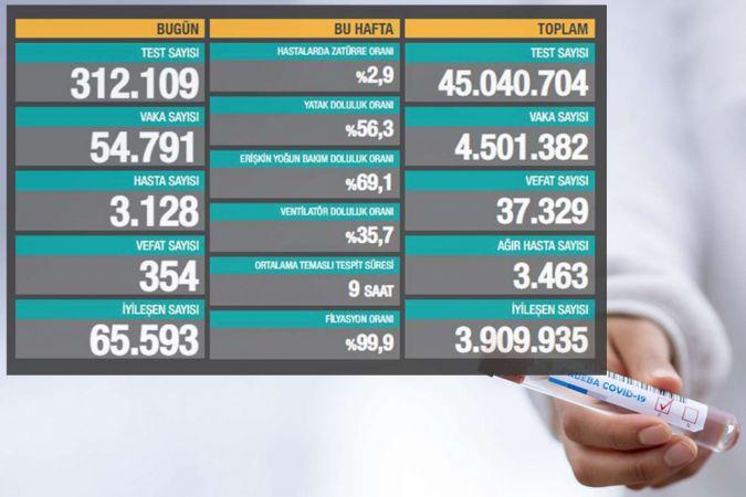 Türkiye'de son 24 saatte 354 can kaybı 54 bin 791 kişiye de Covid-19 tanısı kondu