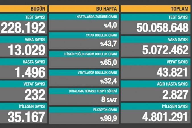 Türkiye'de son 24 saatte Covid-19'dan 232 kişi vefat etti