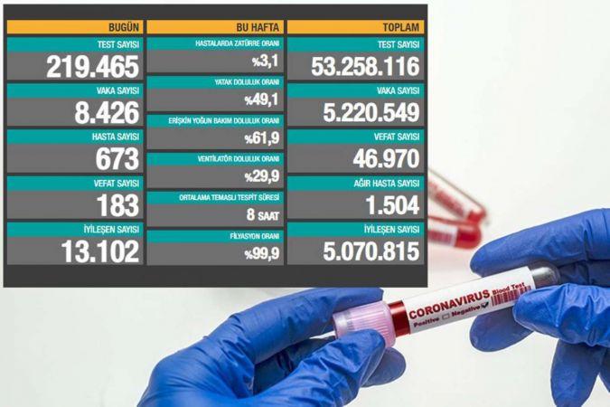 Türkiye'de Coronavirus: Son 24 saatte 183 can kaybı, 8 bin 426 yeni vaka
