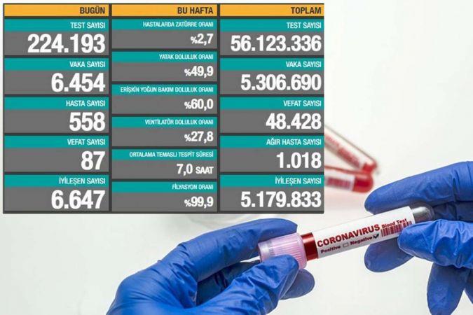 Türkiye'de Coronavirus: Son 24 saatte 87 can kaybı, 6 bin 454 yeni vaka