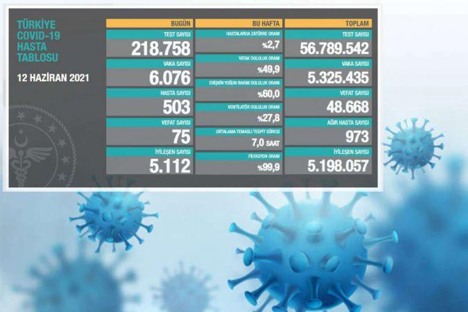 Türkiye'de Coronavirus: Son 24 saatte 75 can kaybı, 6 bin 76 yeni vaka
