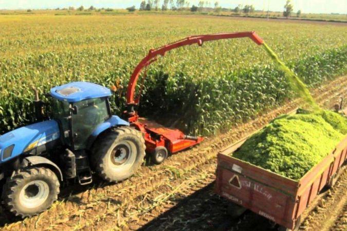 Tarım-ÜFE yıllık yüzde 20,20 arttı, aylık yüzde 0,43 azaldı