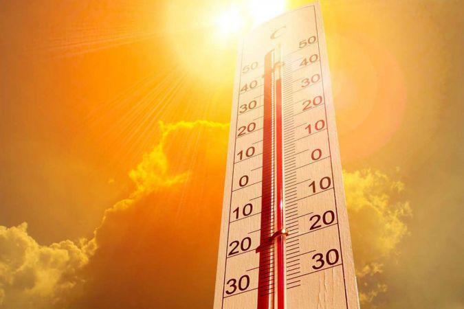Kanada'da aşırı sıcaklar nedeniyle ölenlerin sayısı 130'a yükseldi