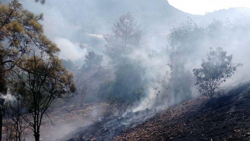 Antalya'da faciadan dönüldü... Bahçe yangını ormanlık alana sıçramadan söndürüldü