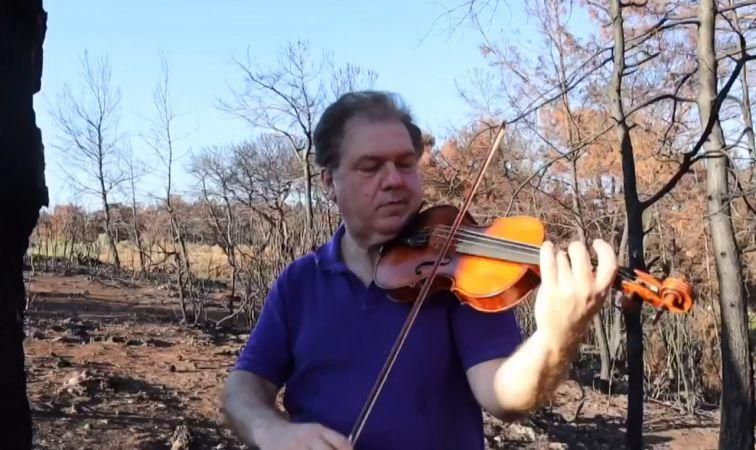 Küle dönen ormanda konser verdi