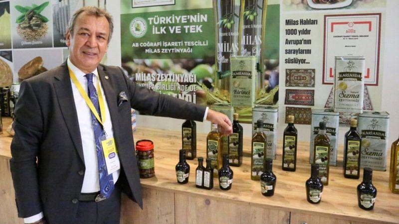 AB tescilli Milas zeytinyağının ihracatı 3'e katlandı