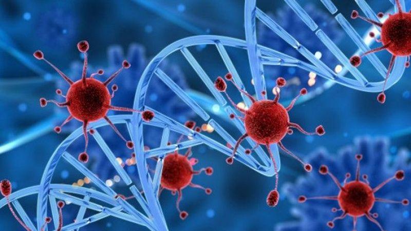 Kanserde risk faktörleri nelerdir?