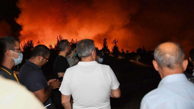 Adana Valisi Elban yangın bölgesinde