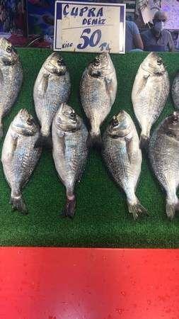 Pazarda balık bereketi