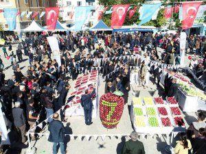 Göksun Elma Festivali'nin 7.si coşkuyla yapıldı