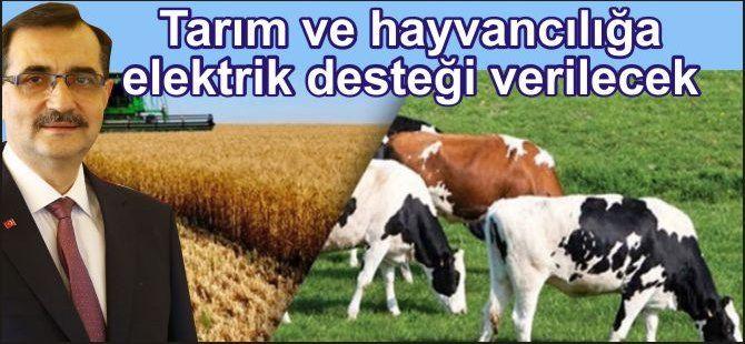 Tarım ve hayvancılığa elektrik desteği verilecek