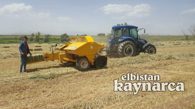 Elbistan'da ikinci ekim yem bezelyesi ve fiğle yaygınlaşıyor