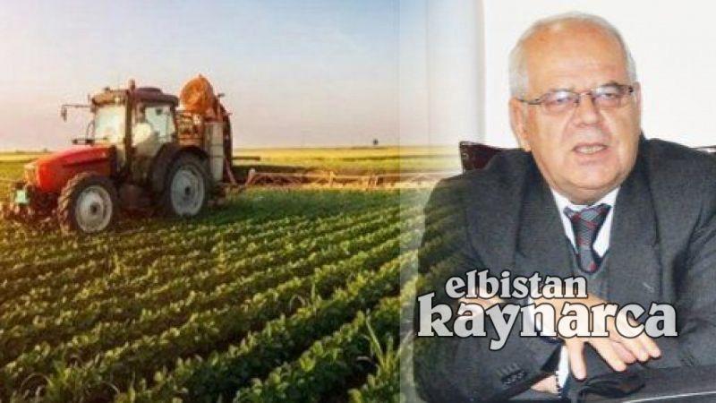Çiftçilere yonca ve mercimek tohumu ile ceviz fidanı desteği