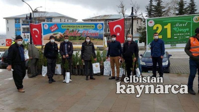 Nurhak'ta vatandaşlara çam ve sedir fidanı dağıtıldı