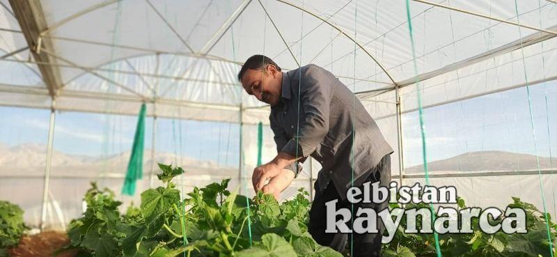 Elbistan'ın ilk modern serasında ürün çeşitliliği artıyor