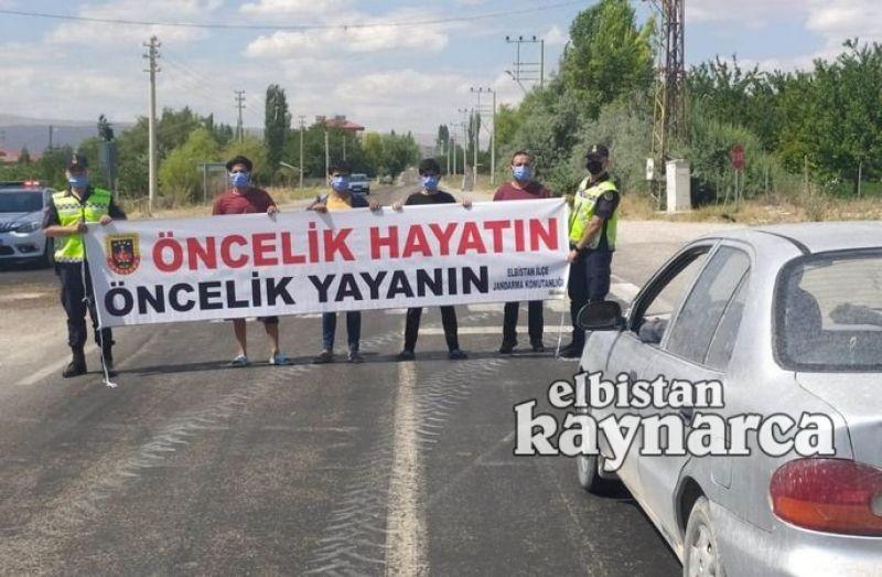 Jandarma trafikten 'öncelik yayanın, öncelik hayatın' denetimi