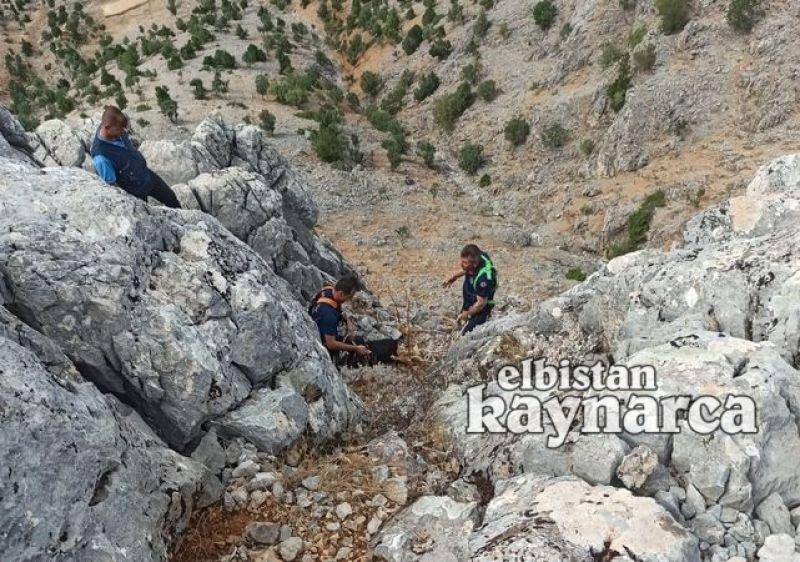 Kayalıklarda mahsur kalan keçileri itfaiye ekipleri kurtardı