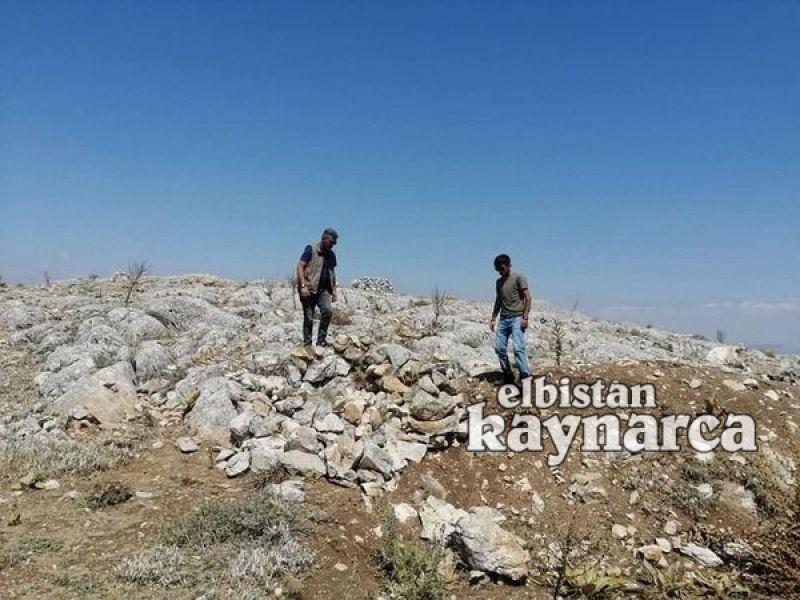 Yasadışı yaban keçisi avı için kurulan evsinler imha edildi