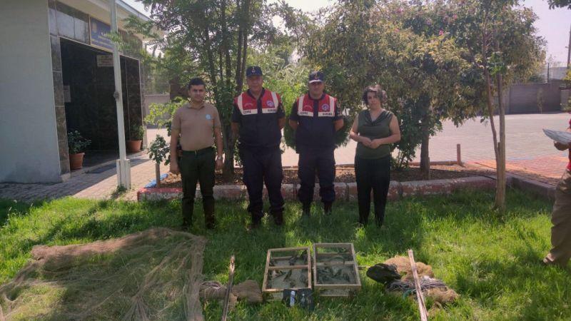 Kahramanmaraş'ta tuzakla saka kuşu avlayan 2 kişiye 43 bin lira ceza