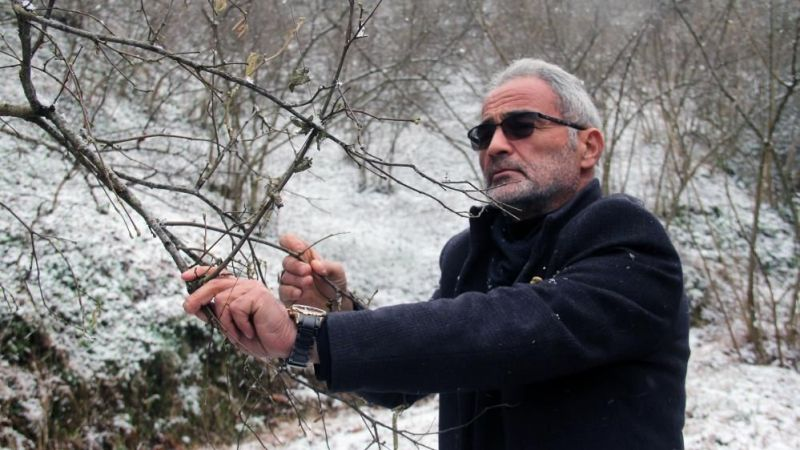 Kar yağışı fındık üreticisini sevindirdi