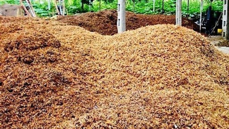 Fındık zurufunun bahçelerde gübre olarak kullanılması tavsiye edildi