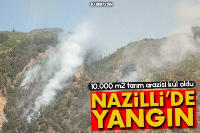 Nazilli'de 1 hektar tarım arazisi zarar gördü