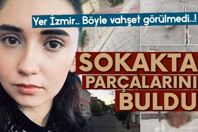 İzmir'de kedi katliamı