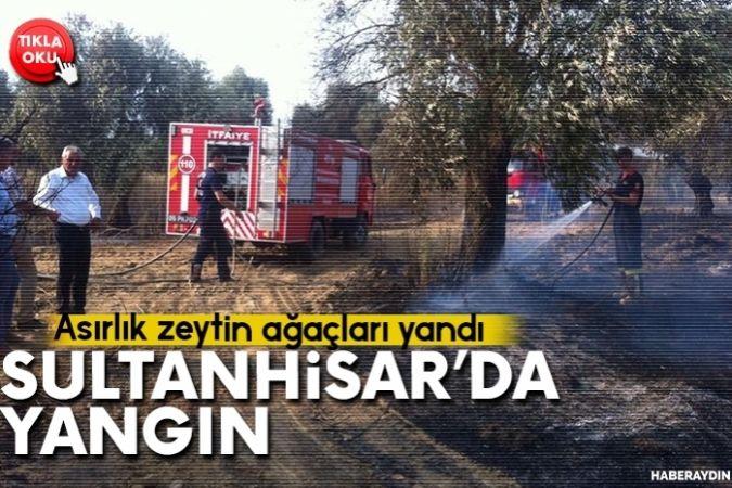 Sultanhisar'da yangın