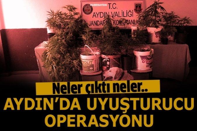 Efeler'de jandarmadan uyuşturucu operasyonu