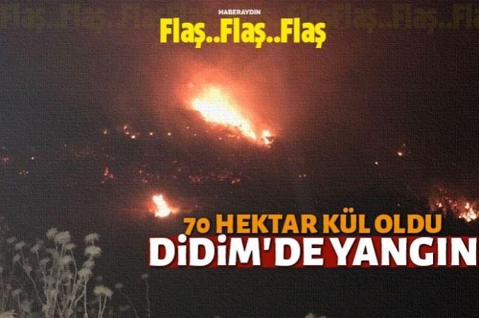 Didim'de maki yangını
