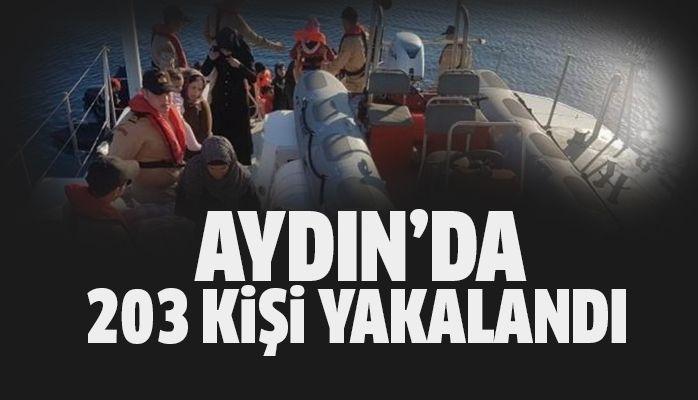 Aydın'da 203 kişi yakalandı