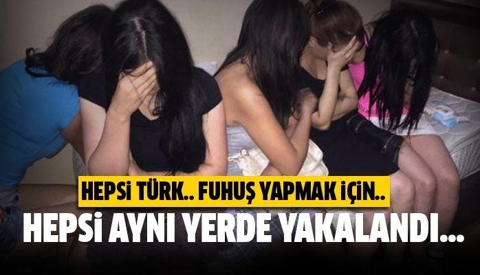 Hepsi Türk..!