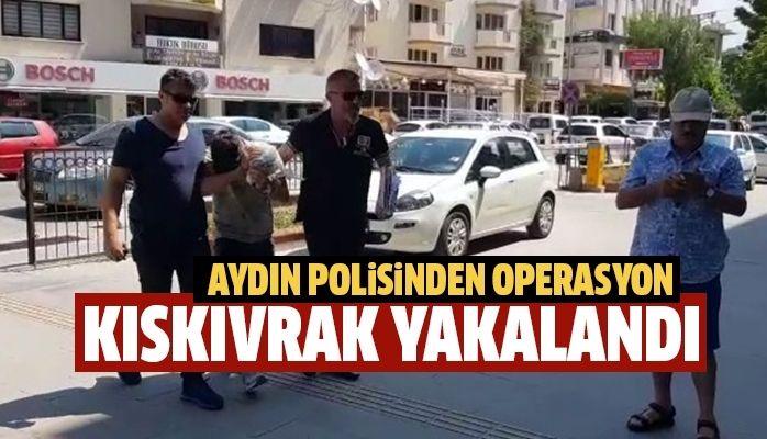 Aydın polisinden operasyon