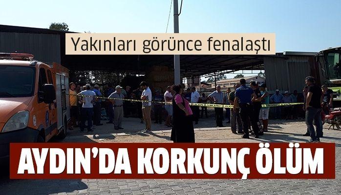 Aydın'da korkunç ölüm