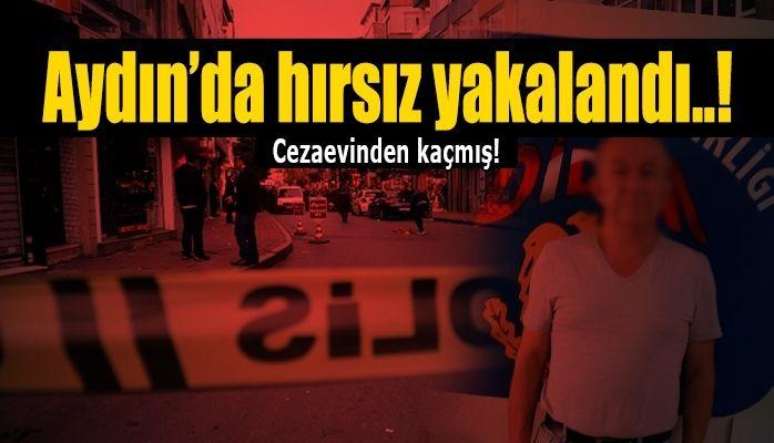 Aydın'da hırsız yakalandı