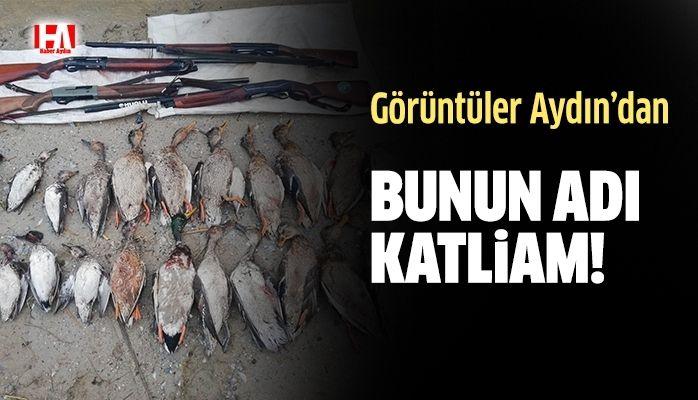 Bunun adı katliam.! 16 bin lira ceza kesildi