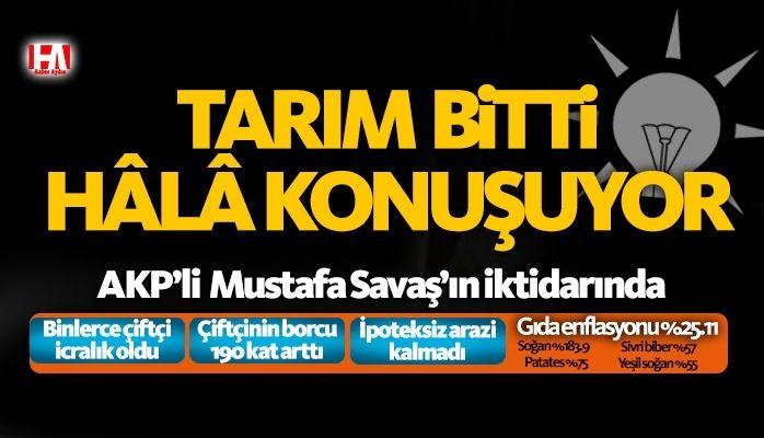 AKP'li Mustafa Savaş Aydınlılar'ın aklıyla alay ediyor