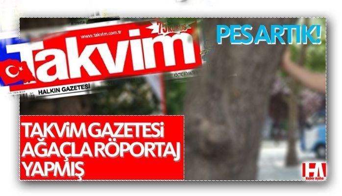TAKVİM'den ağaçla röportaj