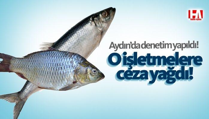 Aydın'da o işletmelere ceza yağdı