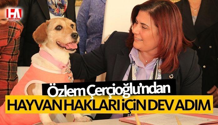 Başkan Çerçioğlu'ndan Hayvan Hakları İçin Dev Adım