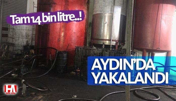 Aydın'da yakalandı.! Tam 14 bin litre!