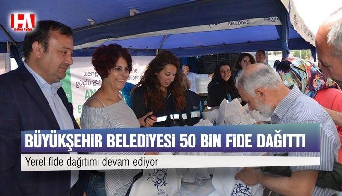 Büyükşehir Belediyesi 50 bin yerel fide dağıttı