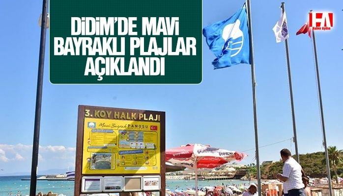 Didim'de 10 plaja mavi bayrak