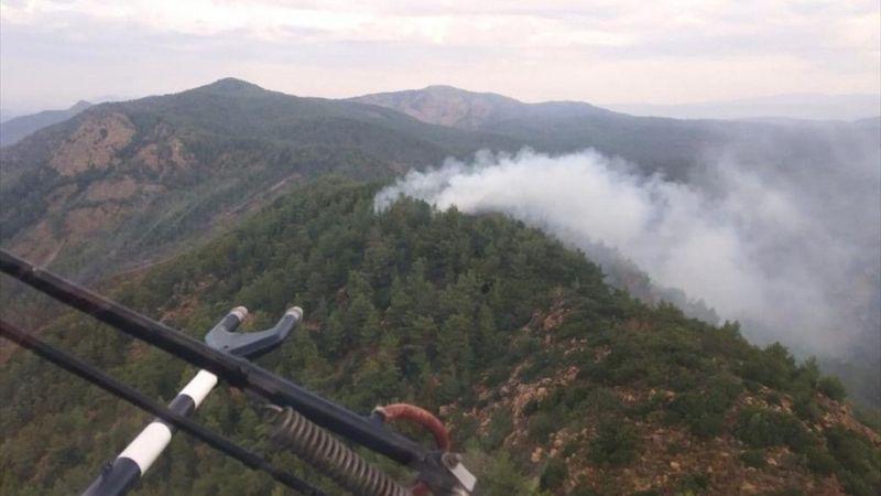 Muğla'da orman yangınları