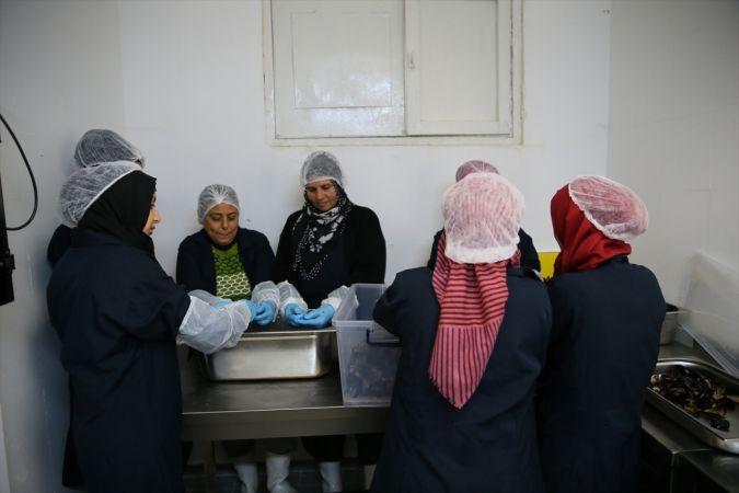 """""""Barış sembollü kooperatif"""", Suriyeli kadınlara geçim umudu oldu"""